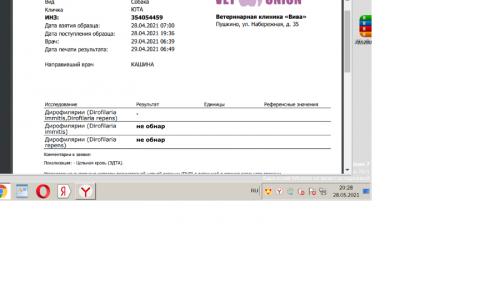 Юта.28.4.2021 дирофилирии.png