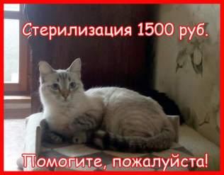 IMG_20210329_145629.thumb.jpg.06333a64fc9216401833f395366999f6.jpg